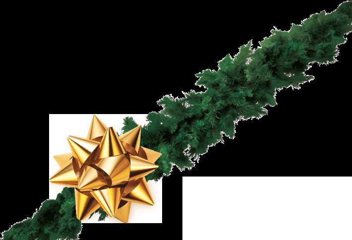 Vianočné kupóny pre Vás